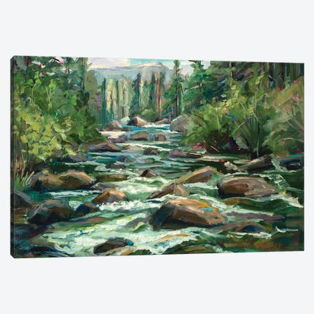 River Song Canvas Print #RIM48} by Marie Massey Canvas Wall Art