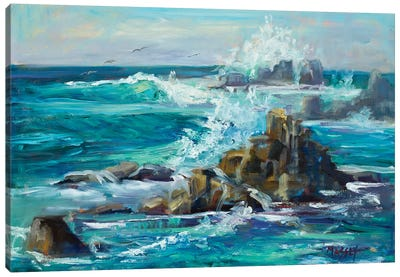 Ocean Spray Canvas Art Print