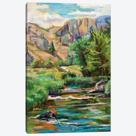 Swallowtail River Canyon Canvas Print #RIM53} by Marie Massey Art Print