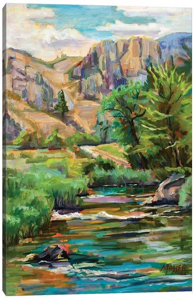 Swallowtail River Canyon Canvas Art Print