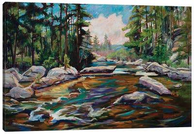 Running Waters Canvas Art Print