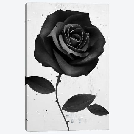 Fabirc Rose Canvas Print #RIR11} by Ruben Ireland Canvas Wall Art