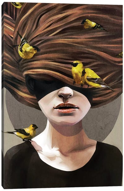 Girl With Finches Canvas Art Print