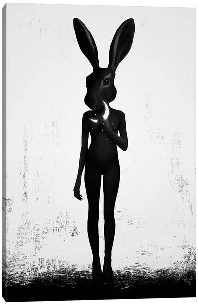 Lepus Canvas Art Print