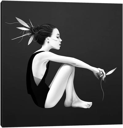 Skyling Canvas Art Print