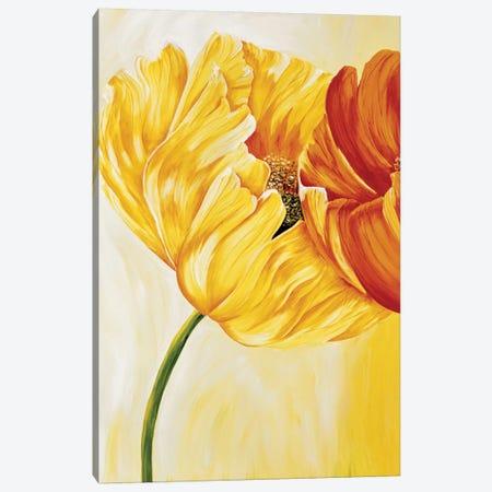 Dancing Tulips I 3-Piece Canvas #RIX1} by Beatrix Frederiks Canvas Print