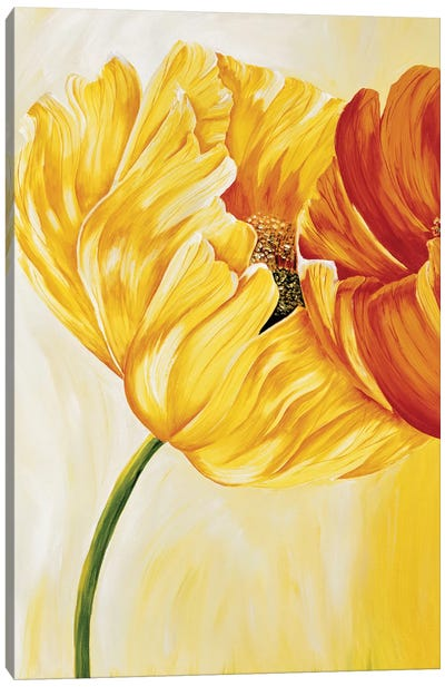 Dancing Tulips I Canvas Art Print