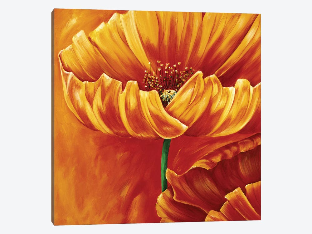 Poppies In Bloom I by Beatrix Frederiks 1-piece Canvas Artwork