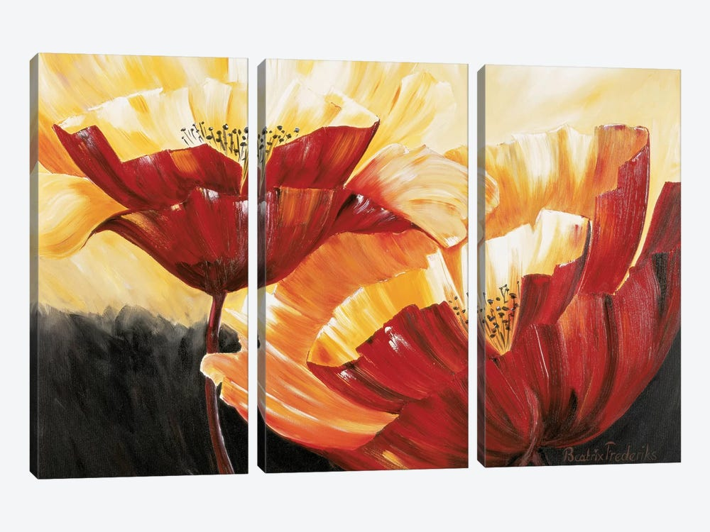 The Three Poppies by Beatrix Frederiks 3-piece Art Print