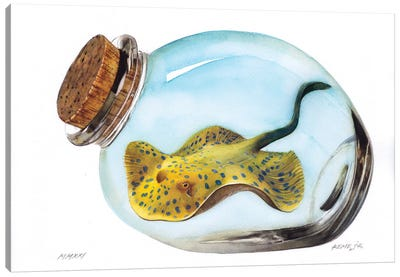 Bluespotted Ribbontail Ray In Jar Canvas Art Print