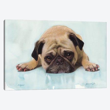 Pug VIII Canvas Print #RJR28} by REME Jr Art Print