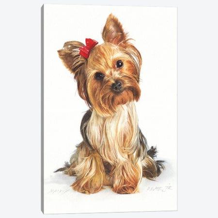 Yorkshire Terrier Canvas Print #RJR34} by REME Jr Art Print