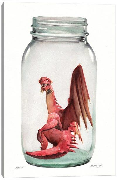 Dragon In Jar I Canvas Art Print