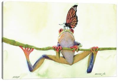 The Frog And The Butterfly Canvas Art Print