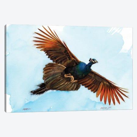 Peacock III Canvas Print #RJR51} by REME Jr Canvas Art