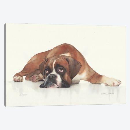 Boxer Canvas Print #RJR76} by REME Jr Art Print