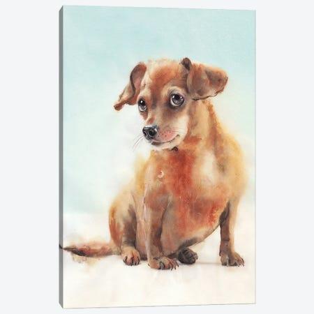 Dog I Canvas Print #RJR80} by REME Jr Canvas Print