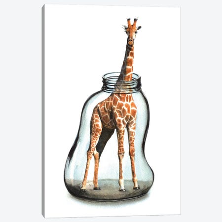 Giraffe In Jar VII Canvas Print #RJR82} by REME Jr Art Print
