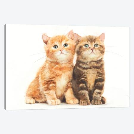 Two Kittens Canvas Print #RJR87} by REME Jr Canvas Artwork