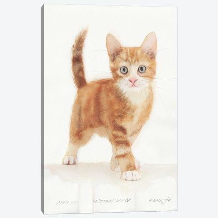 Kitten XXIV Canvas Print #RJR88} by REME Jr Canvas Print