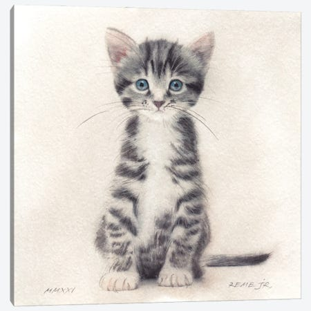 Kitten XXXI Canvas Print #RJR93} by REME Jr Canvas Artwork