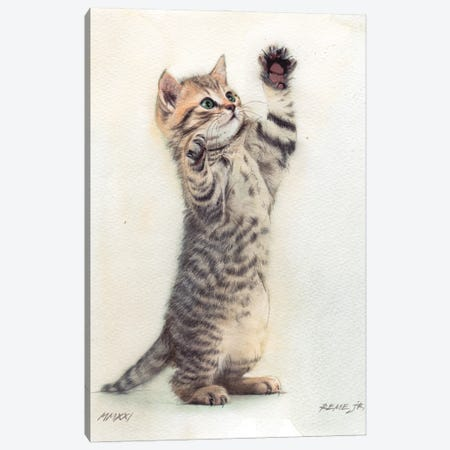Kitten XXXVI Canvas Print #RJR95} by REME Jr Canvas Art Print