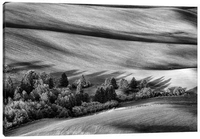 Palouse Shadows Black And White Canvas Art Print