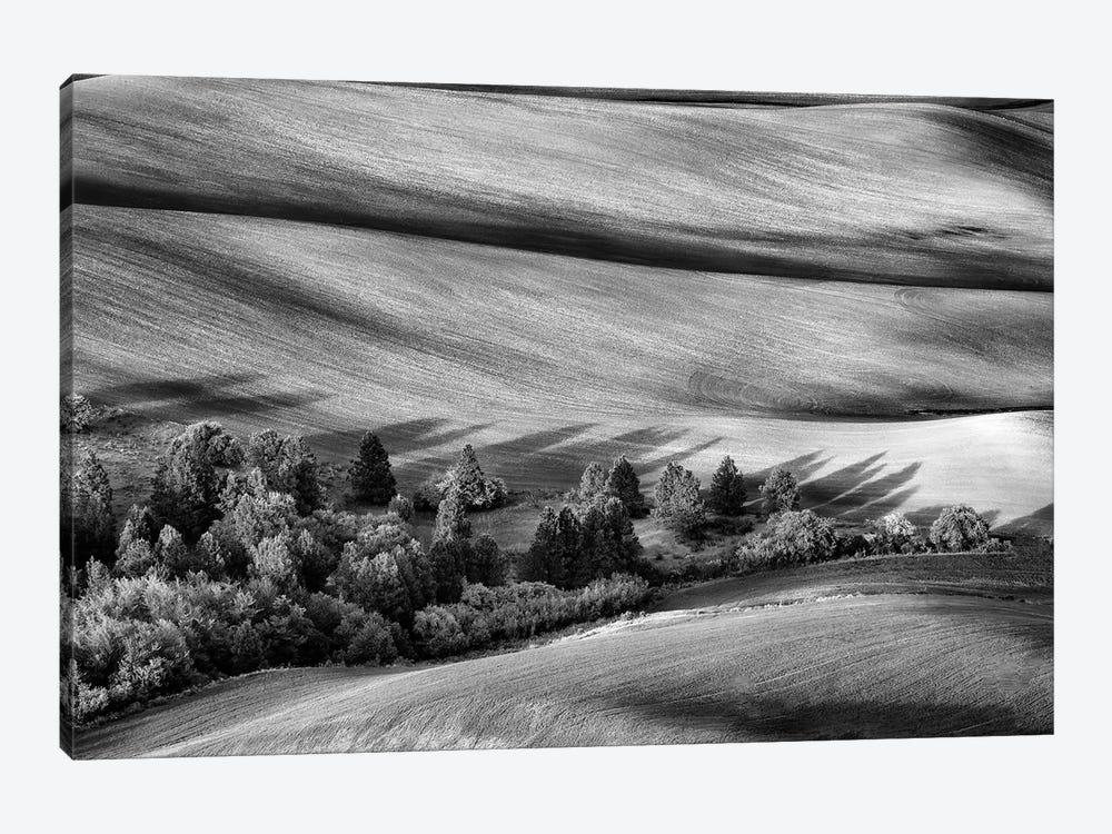 Palouse Shadows Black And White by Rick Berk 1-piece Canvas Wall Art