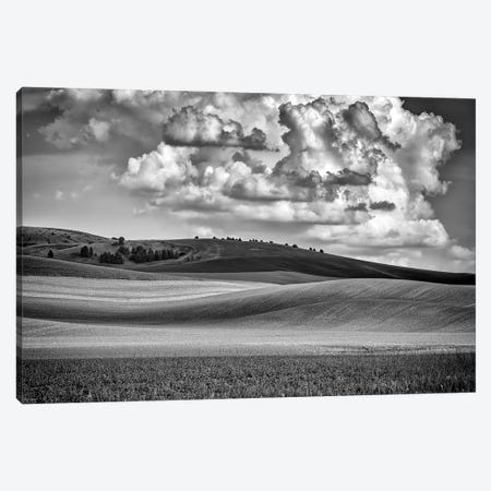 Spring Afternoon In The Palouse Black And White Canvas Print #RKB33} by Rick Berk Canvas Print