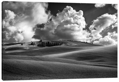 Afternoon Bliss In The Palouse Black And White Canvas Art Print