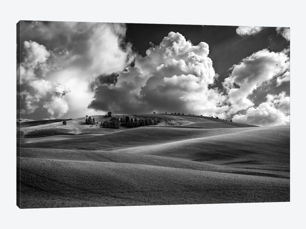 Afternoon Bliss In The Palouse Black And White by Rick Berk 1-piece Canvas Print