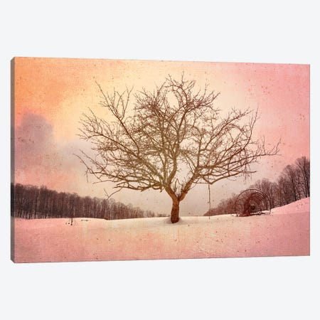 Winter Evening At Cloudland Farm Canvas Print #RKB52} by Rick Berk Canvas Print