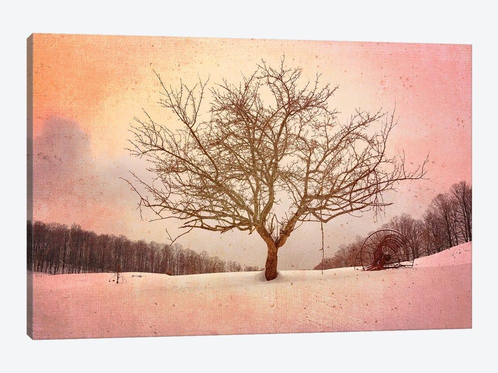 Winter Evening At Cloudland Farm by Rick Berk 1-piece Canvas Art