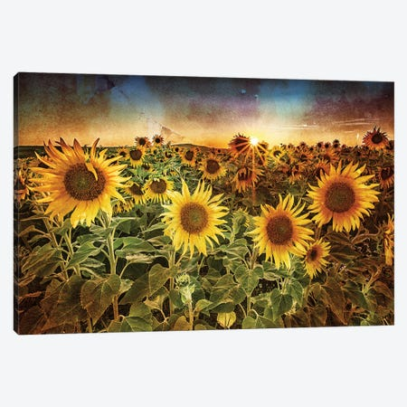 Aroostook Sunset Texture Canvas Print #RKB7} by Rick Berk Canvas Art Print