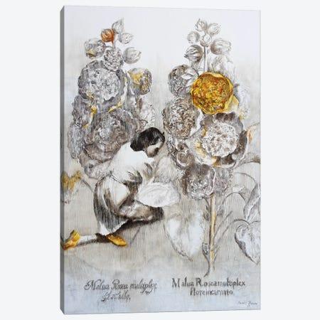 Malua Rosea Multiplex Canvas Print #RKO56} by Rudolf Kosow Art Print
