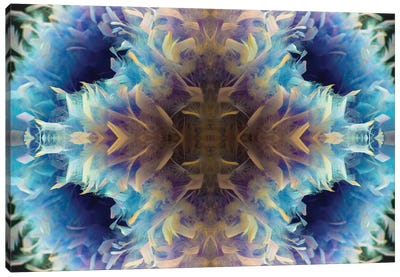 Abstract Photomontage No. 35 II Canvas Art Print
