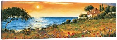 Sunlight Coast Canvas Art Print
