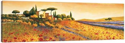 Sunlight Country Canvas Art Print