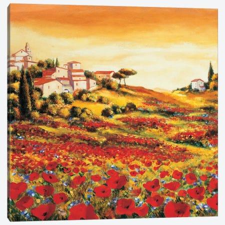 Valley of Poppies Canvas Print #RLB3} by Richard Leblanc Canvas Print