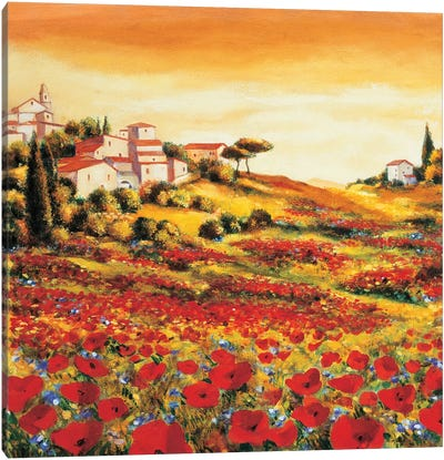 Valley of Poppies Canvas Art Print