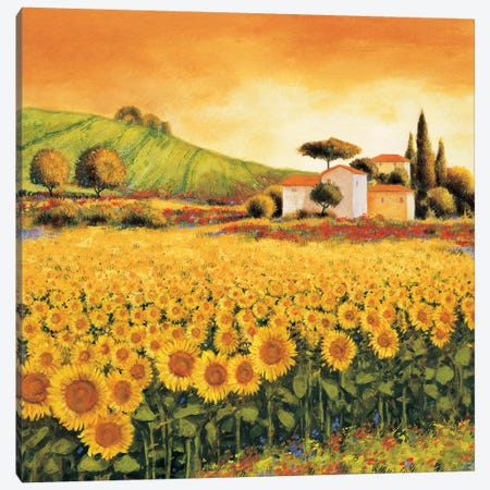 Valley of Sunflowers Canvas Print #RLB4} by Richard Leblanc Canvas Wall Art