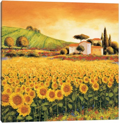 Valley of Sunflowers Canvas Art Print