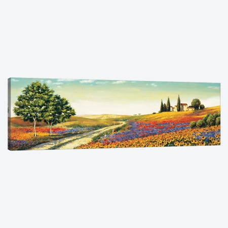 Morning in the Valley Canvas Print #RLB6} by Richard Leblanc Canvas Artwork