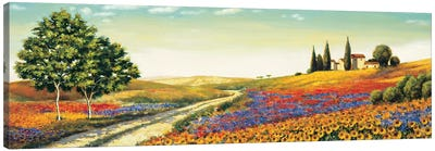 Morning in the Valley Canvas Art Print