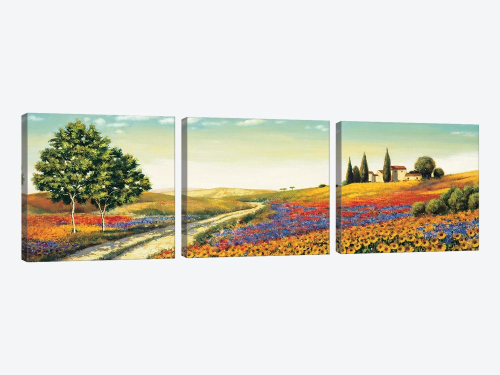 Morning in the Valley by Richard Leblanc 3-piece Art Print
