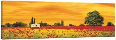 Field of Poppies Canvas Art Print