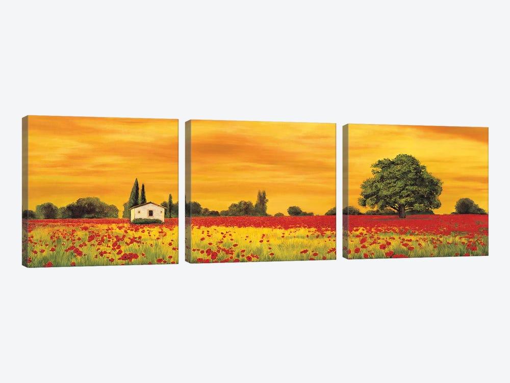 Field of Poppies by Richard Leblanc 3-piece Canvas Art