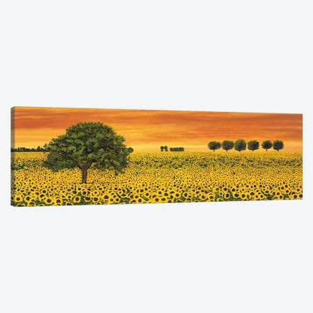 Field of Sunflowers Canvas Print #RLB8} by Richard Leblanc Canvas Art Print