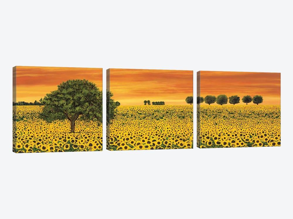 Field of Sunflowers by Richard Leblanc 3-piece Canvas Print