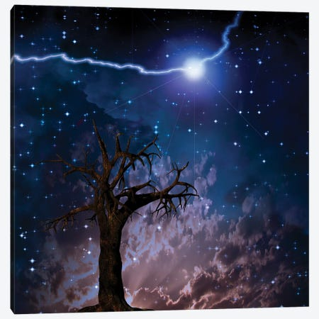 Old Tree Lightning Bolt In Starry Sky Canvas Print #RLF172} by Bruce Rolff Canvas Art